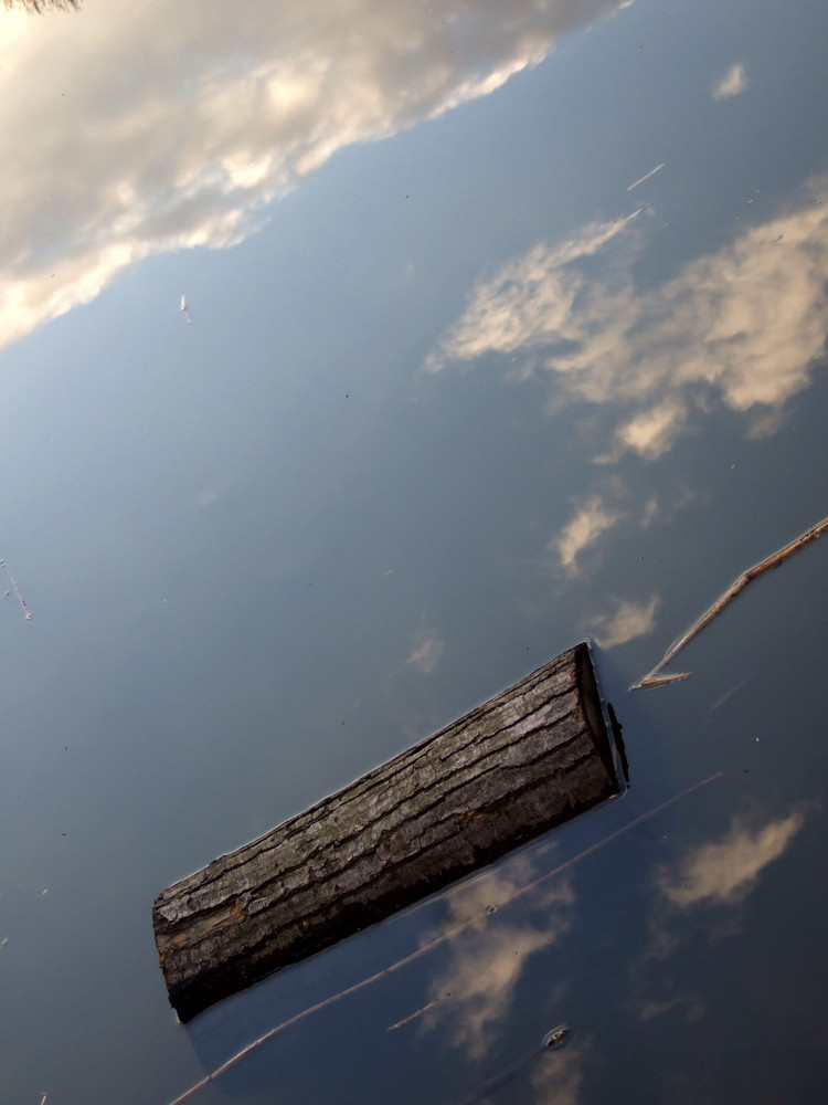 Nage dans le ciel .