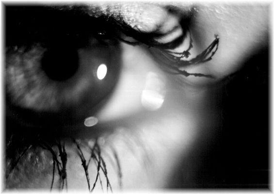 Nahaufnahme Auge