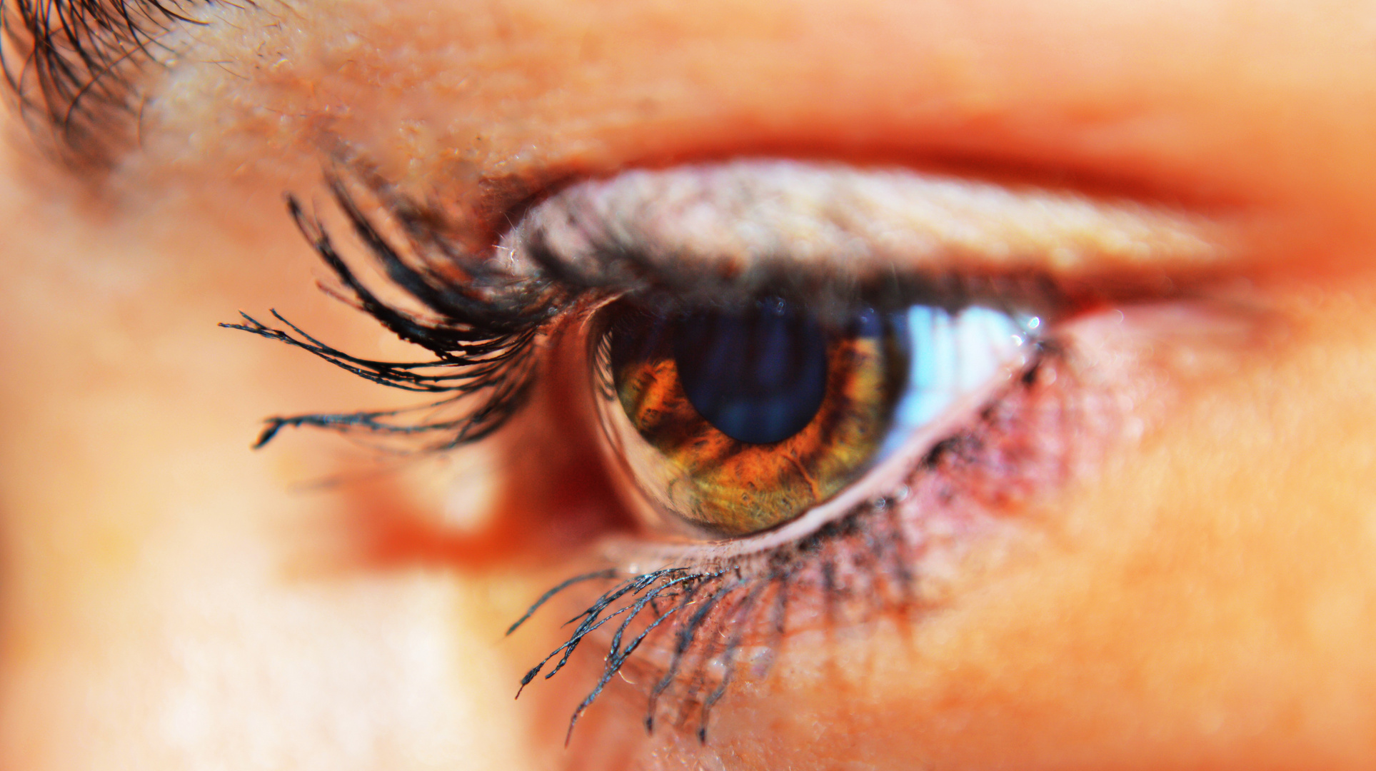 Nahaufnahme vom Auge
