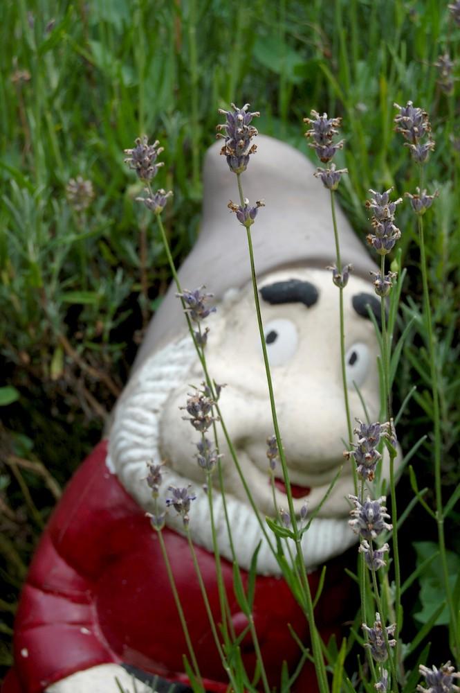 nain de jardin