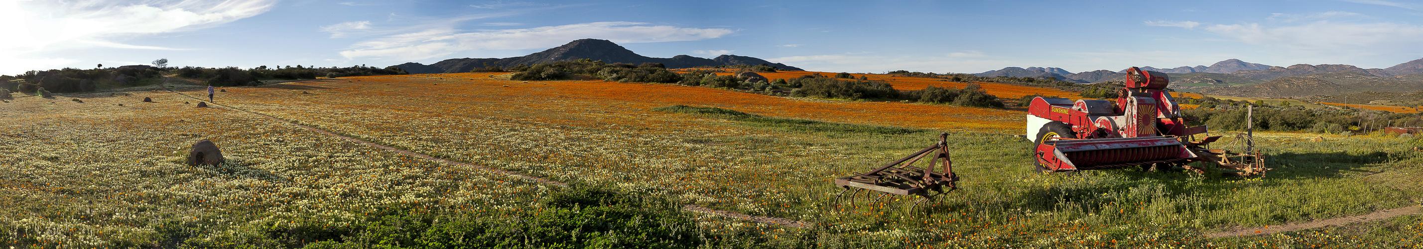 Namaqualand im Panorama