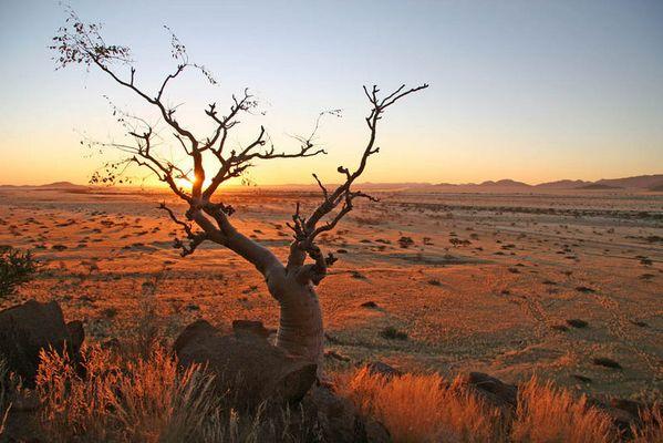 Namib Naukluft Sundowner 1