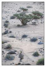 Namibia # 01