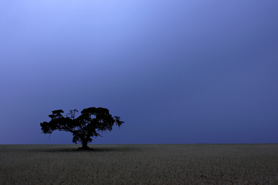Namibia 2012 – Morgendämmerung vor dem ganz grossen Regen…..