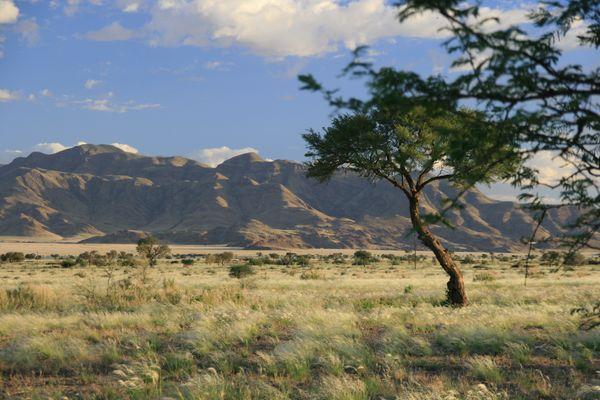 Namibia 2014_2
