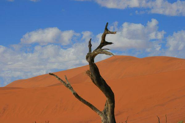 Namibia 2014_4