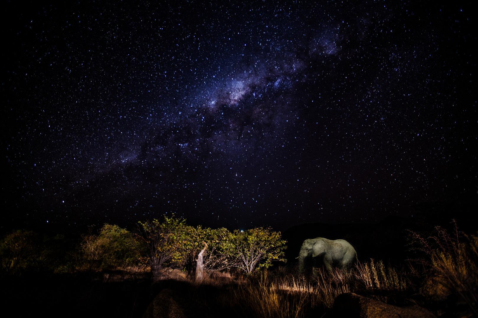 Namibia - Damaraland - Natur pur