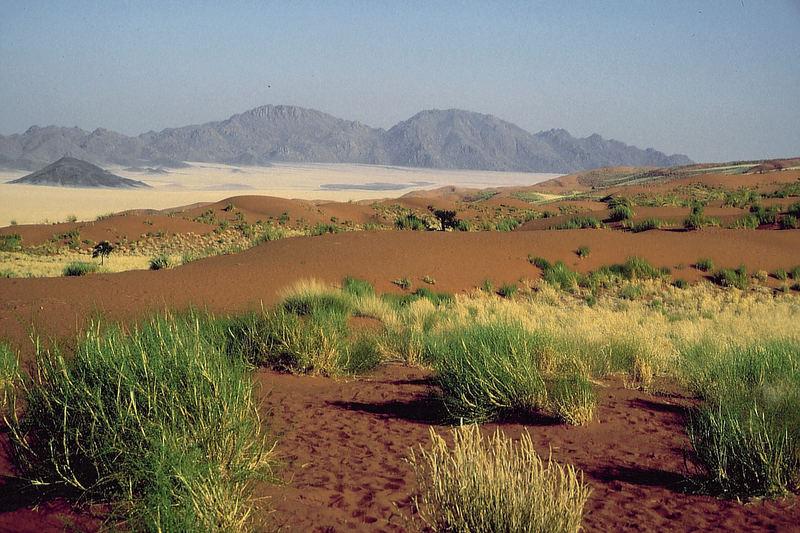 Namibia: Das Paradies liegt in Wolwedans