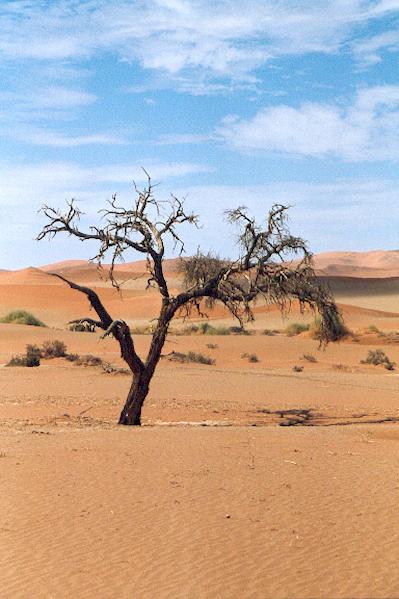Namibia I