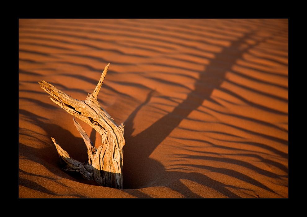 Namibia I - Schattenspiele in der Namib
