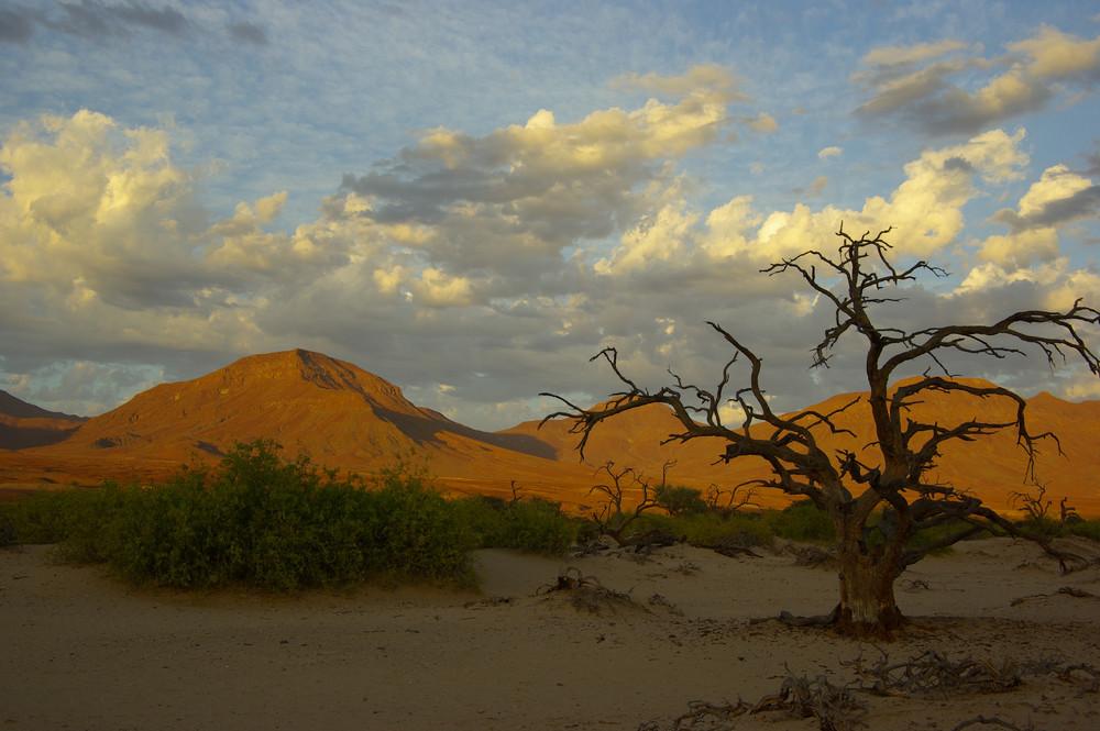 NAMIBIA Kaokoveld 2