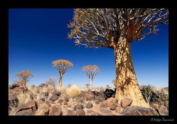 Namibia Klischee 2
