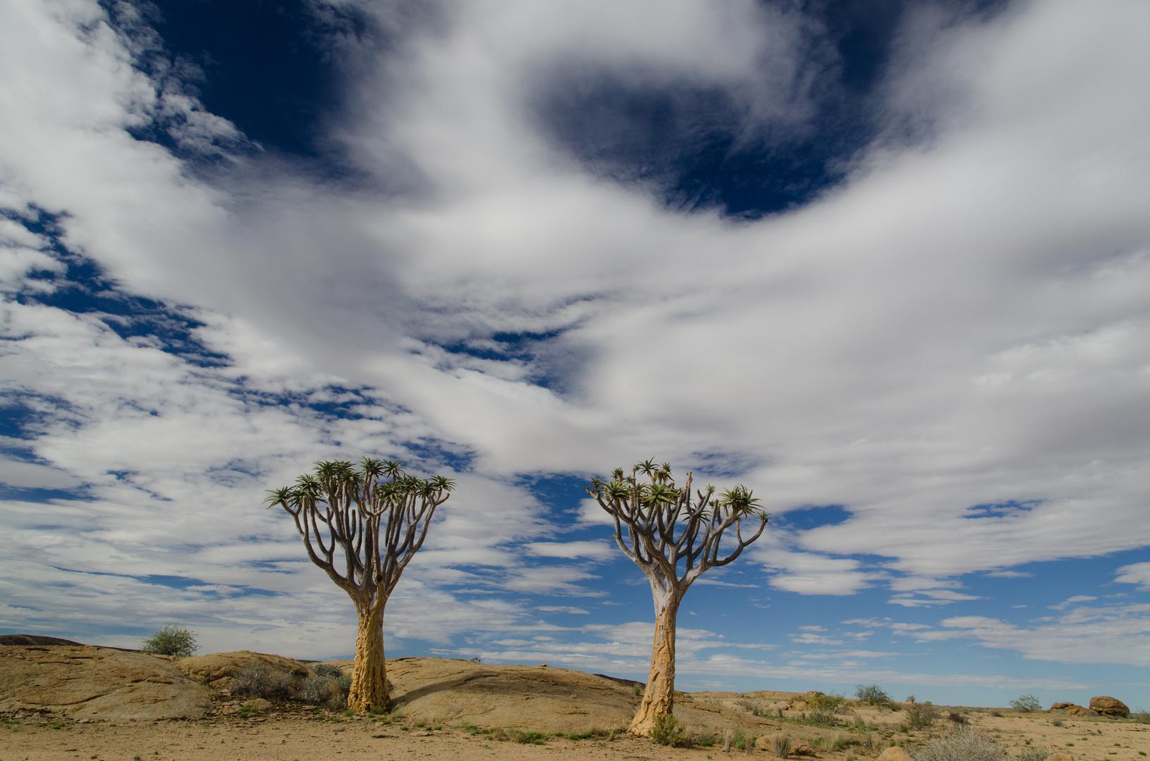 Namibia - Land der Kontraste