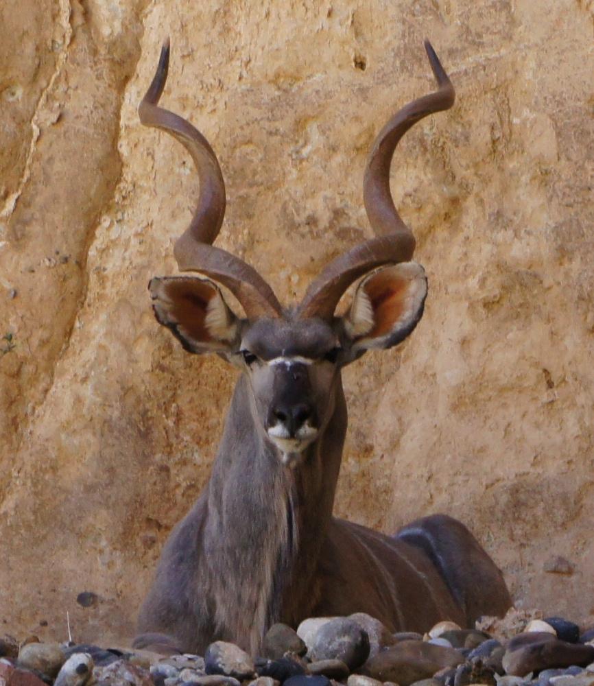 Namibia Nov. 2010-2