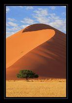 Namibia / Sossusvlei #12