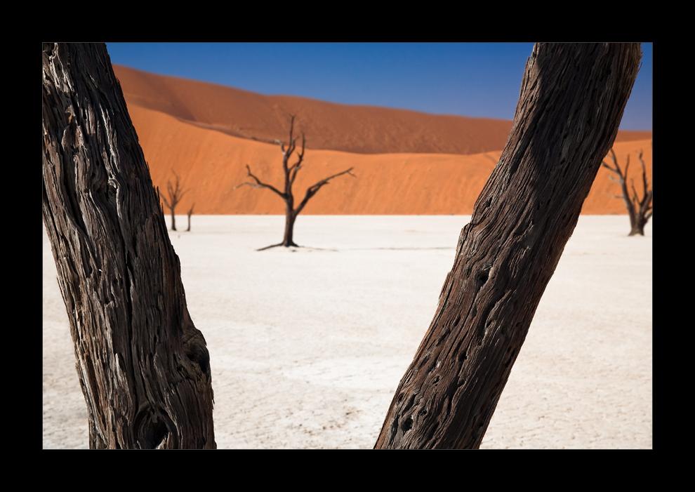 Namibia VII - Deadvlei klassisch