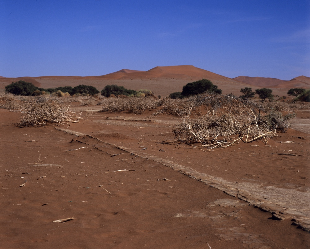 Namibia - Wüste