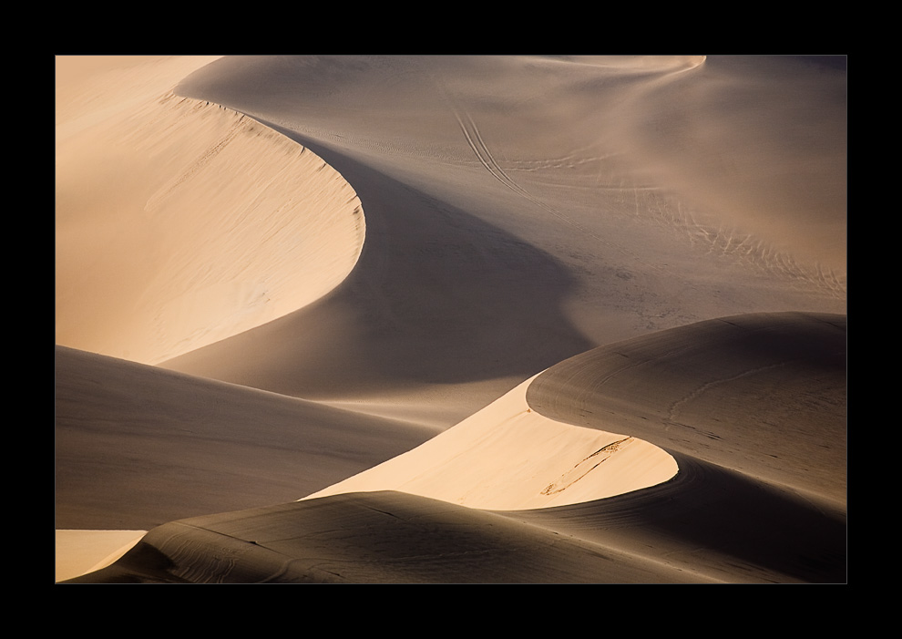 Namibia XVI - Spuren im Sand