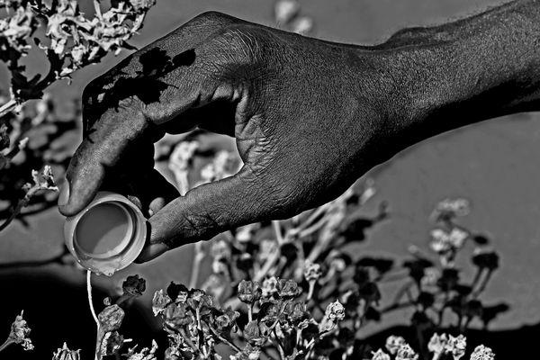 Namibia....la terra assetata