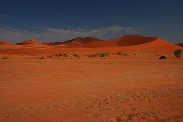 Namibian Desert Session
