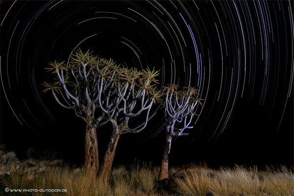 namibian nights