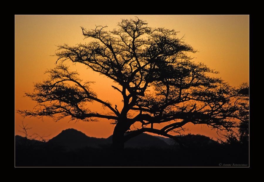 Namibianische Sonnenuntergänge I