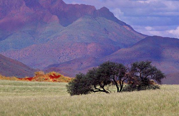 NamibRand Nature Reserve 3