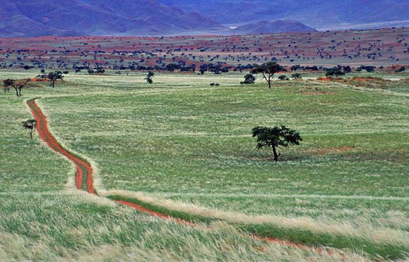 NamibRand Nature Reserve 4