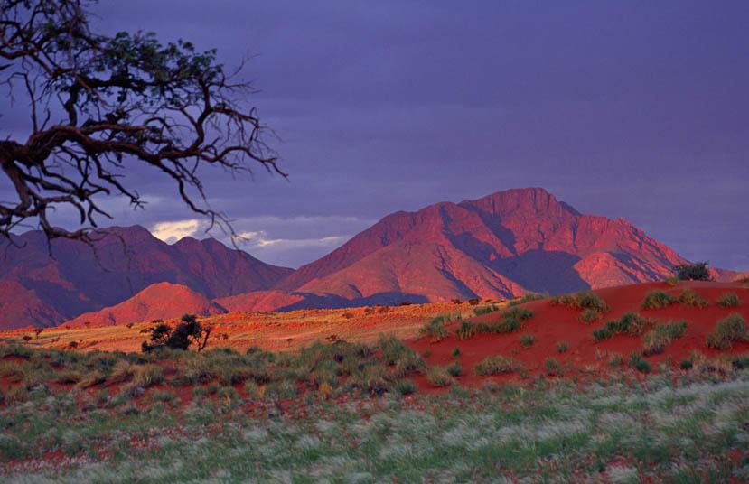 NamibRand Nature Reserve 5