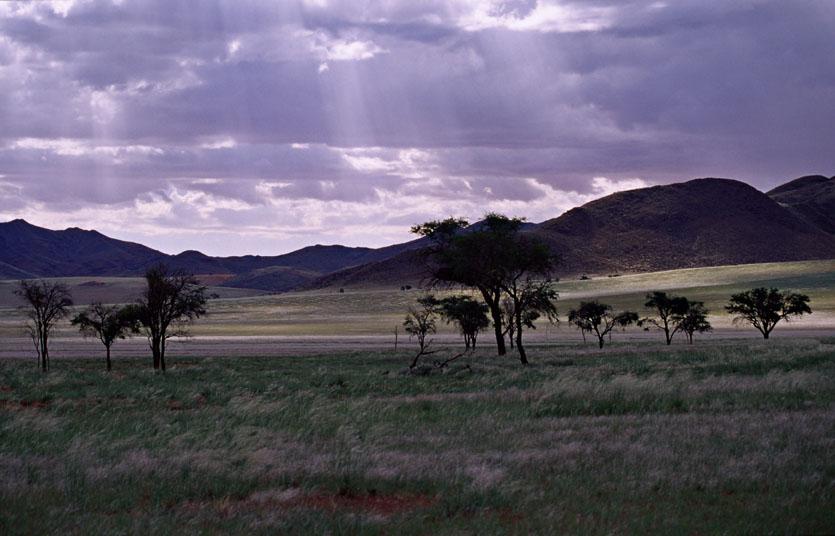 NamibRand Nature Reserve 6