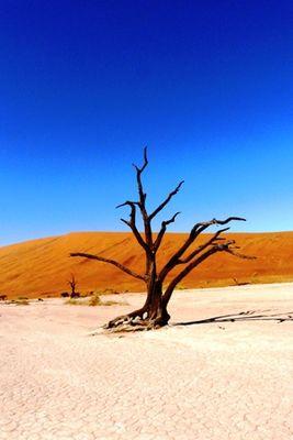 NAMIMIBIA