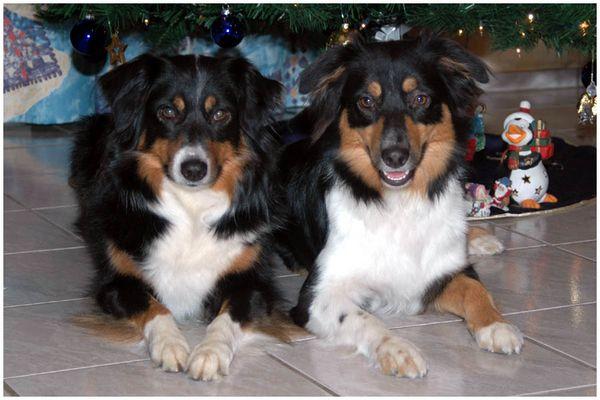 Nana & Casey