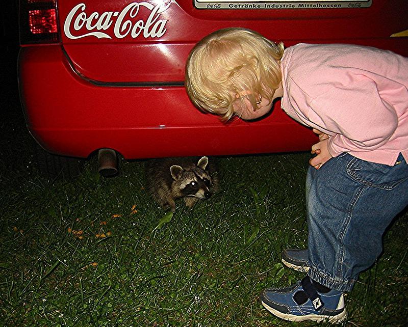 Nanu was hat sich denn da unter Papas Auto versteckt?