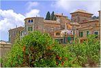 Naranjas en Valldemossa
