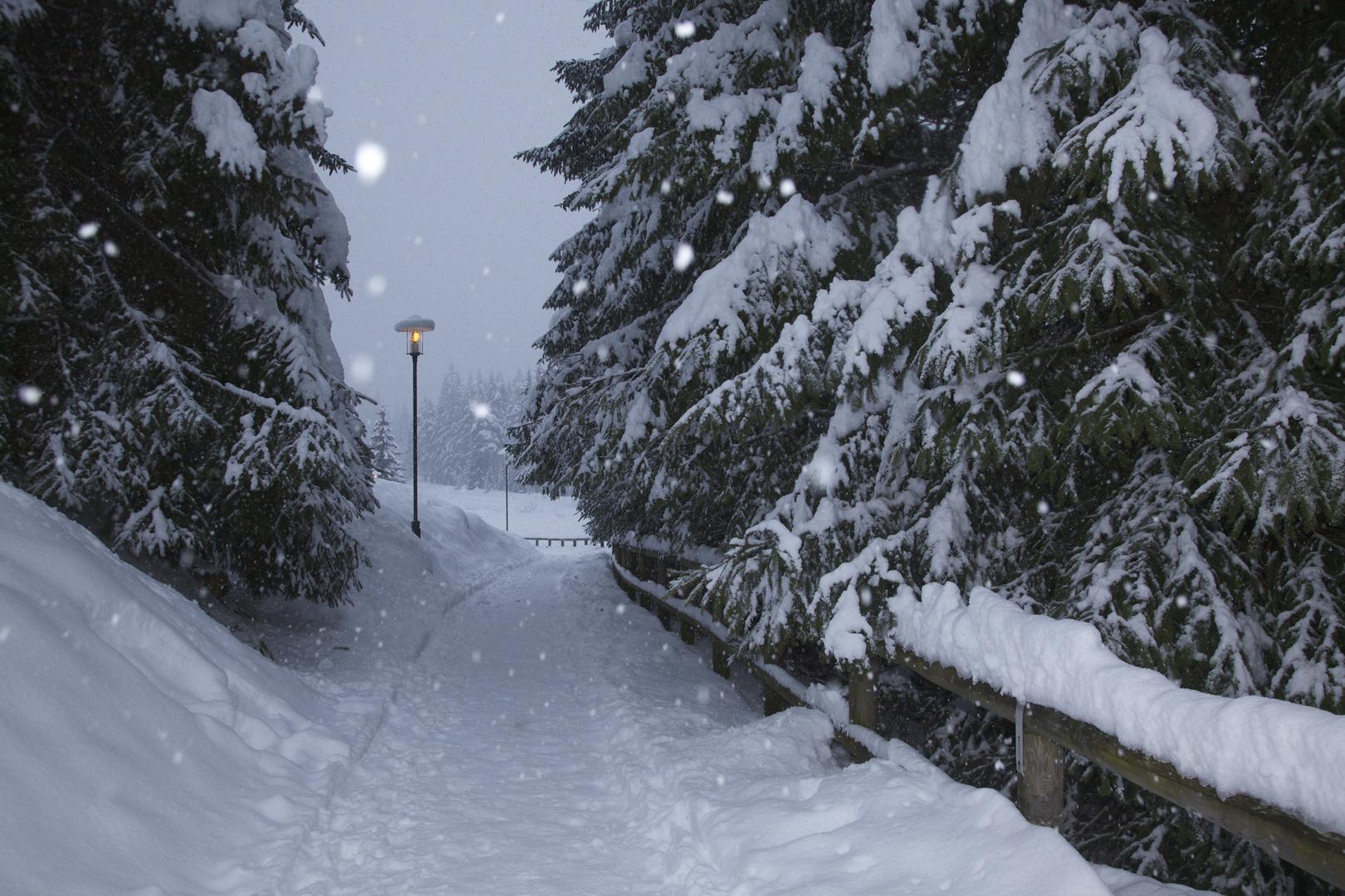 Narnia :)