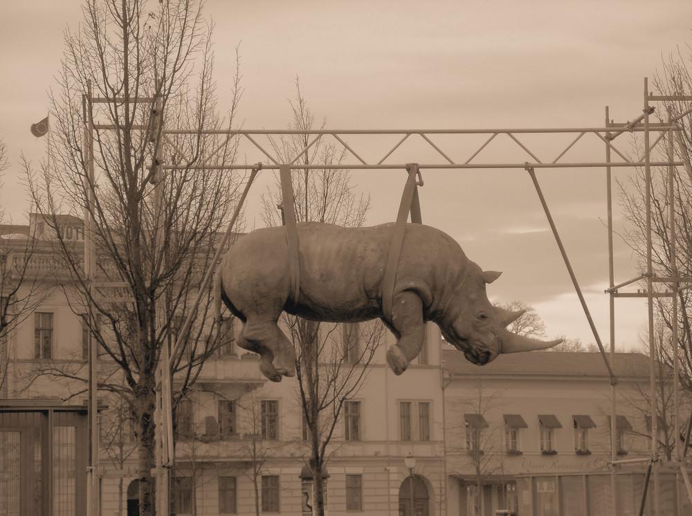 Nashorn am Luisenplatz in Potsdam