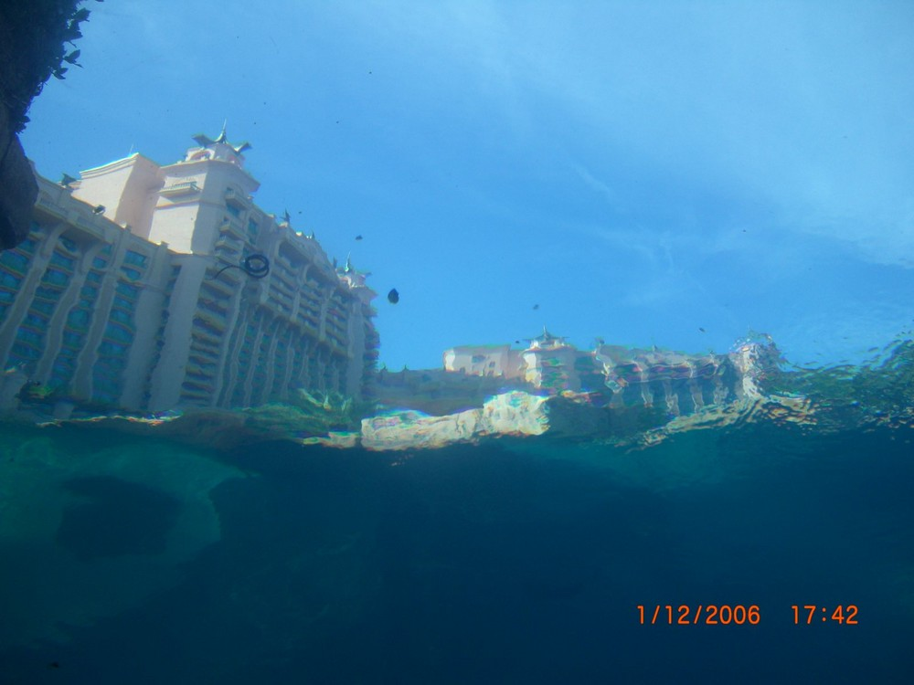 NASSAU BAHAMAS under water