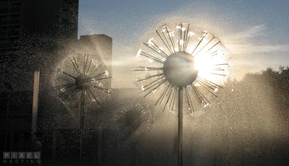 Nasse Sonne