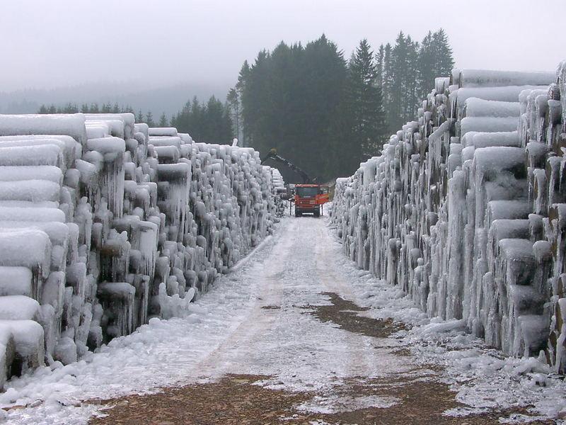 Naßholzlagerplatz