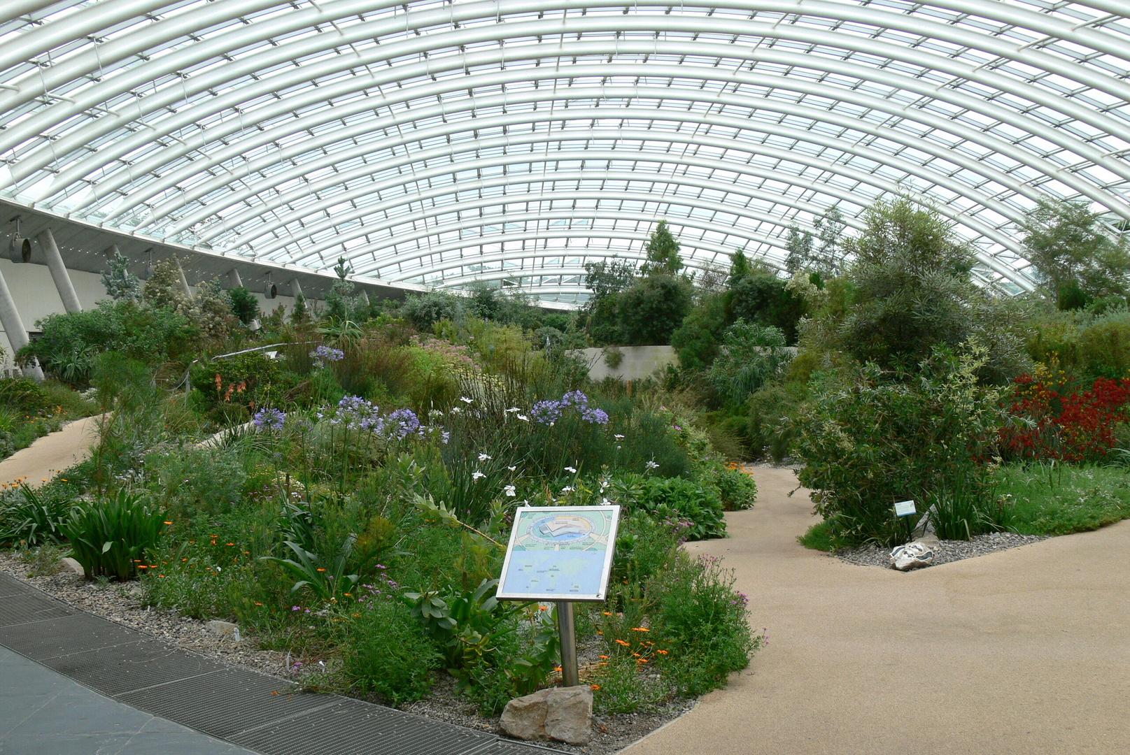 National Botanic Garden of Wales XV