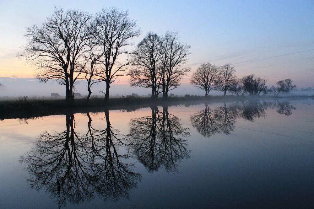 Nationalpark im Nebel