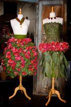 Natürlich schöne Kleider.....