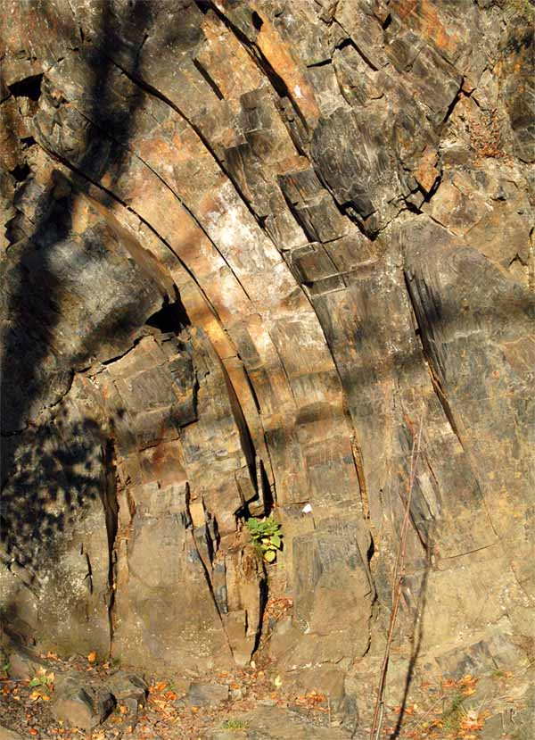 Natürliches Steinleben