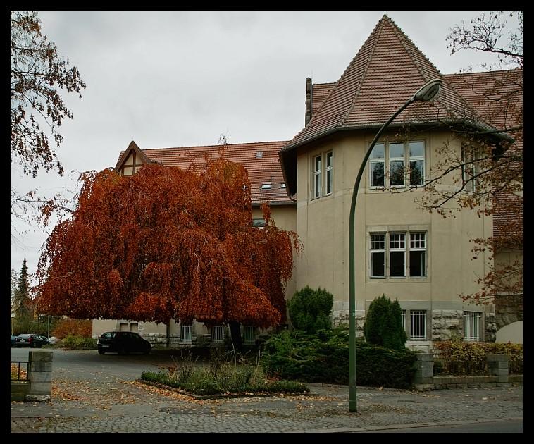 Natur-Carport im Herbst...