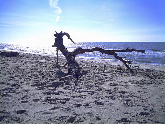 Natur frei.....