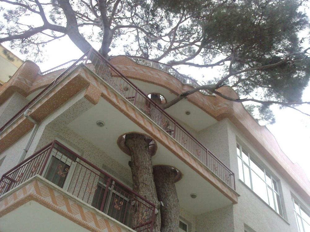 Natur freundliche Hausbesitzer/ -bauer