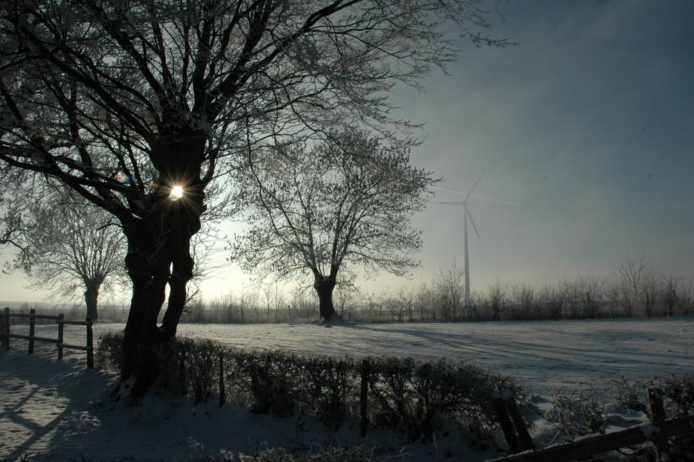Natur im Einklang mit Energieerzeugung