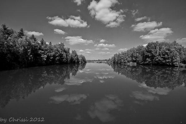Natur mal in Schwarz/weiß