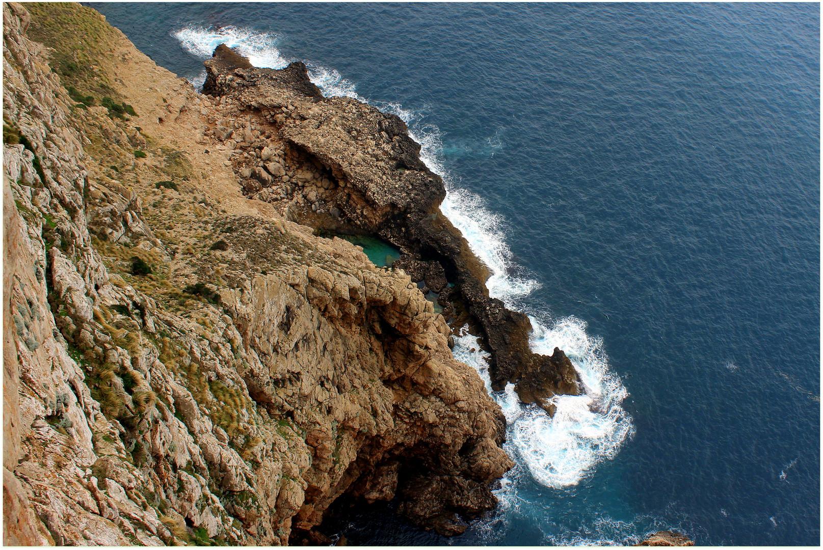 Natur pur auf Formentor