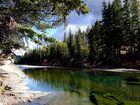 Natur Pur - Castle River in Kanada, Alberta